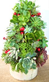 succulent christmas tree topiary centerpiece traditional modern