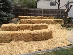 straw bale garden part 1 chella u0027s common cents