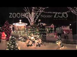 zoo lights stoneham coupons zoolights shines brightly at stone zoo youtube