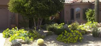 front yard landscape design enchanting landscaping phoenix home
