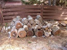 Wood Lathe Projects For Free by Wood Turning Green Wood What Is In The Wood Pile