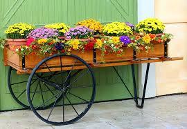 flower cart free photo flower cart wagon mums free image on pixabay 58418