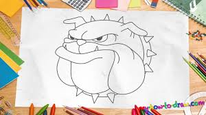 how to draw a bulldog easy step by step drawing lessons for kids