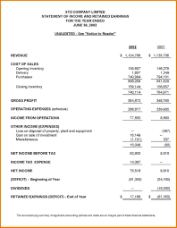 Sample Income Statement Template by 13 Sample Financial Statement Financial Statement Form