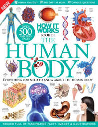 Human Anatomy Pdf Books Free Download How It Works U2013 Book Of The Human Body 7th Edition Download