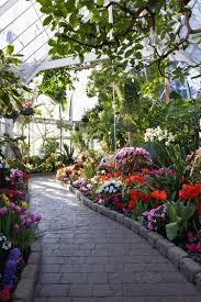 seymour botanical conservatory interior garden plants