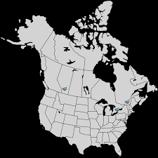 Capital Of Canada Map by Carmel Transport International Ltd Home U2013 We Have The Right