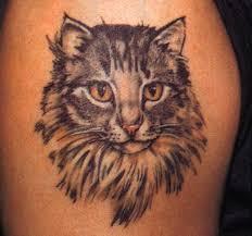 cat tattoo images u0026 designs u2026 pinteres u2026