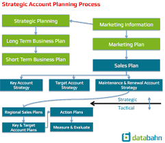 strategic account plan template u2013 databahn