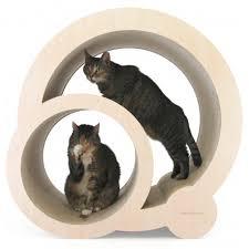 divanetti per gatti economici per gatti rotunda in cartone pressato