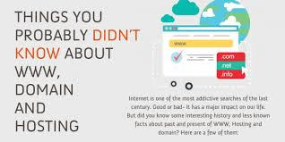 infographic lesser known facts about domain names hosting the
