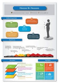 Best Infographic Resumes by 14 Best Infographic Resume Images On Pinterest Infographic