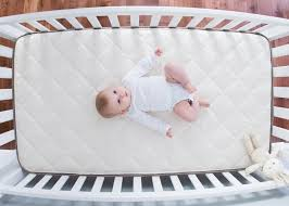 cotton crib mattress crib inhabitots