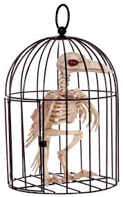 Animated Halloween Skeleton by Skeleton Bird In Cage Halloween Prop Mad About Horror