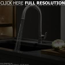 best faucet for kitchen sink kitchen faucets and sinks chrison bellina