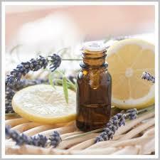 Tea Tree Oil Bathroom Cleaner Homemade All Purpose Cleaner Recipes