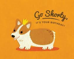 Corgi Birthday Meme - shorty birthday card birthday wishes pinterest birthdays