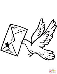 bird coloring pages virtren com