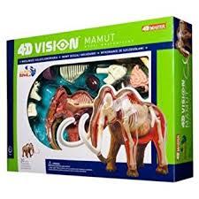 amazon tedco 4d vision woolly mammoth anatomy model toys u0026 games