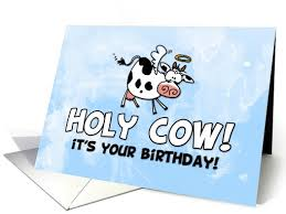 cow greeting cards birthday cards 4 u 03 01 2015 04 01 2015
