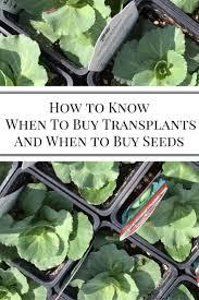 25 best buy seeds ideas on pinterest organic gardening tips