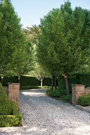 best 25 long driveways ideas on pinterest tree lined driveway