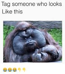 Tag Someone Who Memes - tag someone who looks like this funny meme on me me