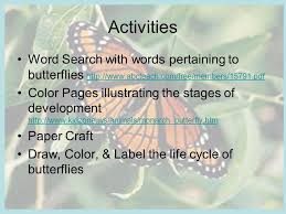 the life cycle of a butterfly ms drake u0027s 3 rd grade class ppt