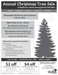 annual york christmas tree sale