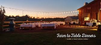 Local Pumpkin Farms In Nj by Welcome To Hills Creek Farms