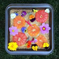 flowers edible 6 must try edible flowers list how to grow and culinary guide