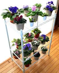 african violet grow light african violet plant light stand coolman club