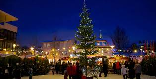 iceland and new year tours amazing trips in reykjavik