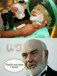 Queen Meme - god shave the queen silly bunt