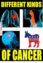 Different Kinds Of Memes - different kinds democrat of cancer meme on me me