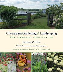 chesapeake bay native plants chesapeake gardening and landscaping the essential green guide