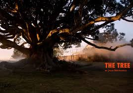 review the tree 2010 australian review