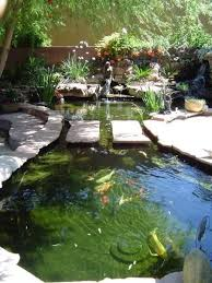 Backyard Fish Pond Ideas 25 Trending Backyard Ponds Ideas On Pinterest Pond Ideas Ponds