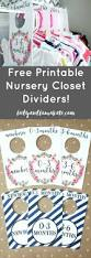 Baby Closet Dividers 178 Best Baby Room Images On Pinterest Babies Rooms Crafts And