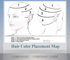 hair color and foil placement techniques guide to multi color hair color formulas documents