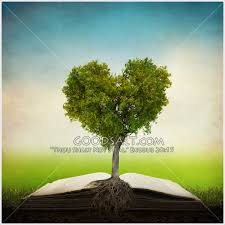 tree on a bible