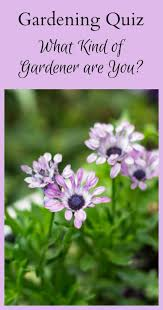 569 best garden ideas images on pinterest flower gardening