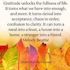 8417 best gratitude images on gratitude
