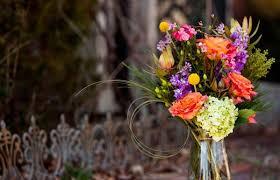 flower places craig sole designs