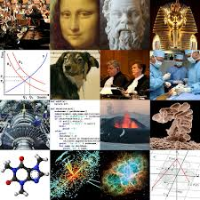 outline academic disciplines