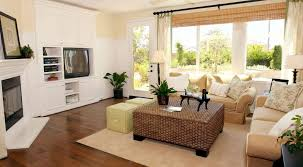 living room wonderful design brown carpet with amazing ideas shag