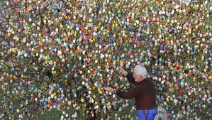 easter egg tree an easter egg tree grows in germany cbs news