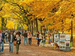 amazing things to do in nyc in october