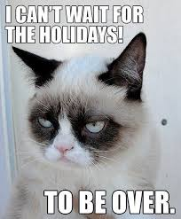 Thanksgiving Cat Meme - have a happy cat thanksgiving gallery