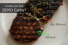 my zero carb diet experiment eat fat lose fat